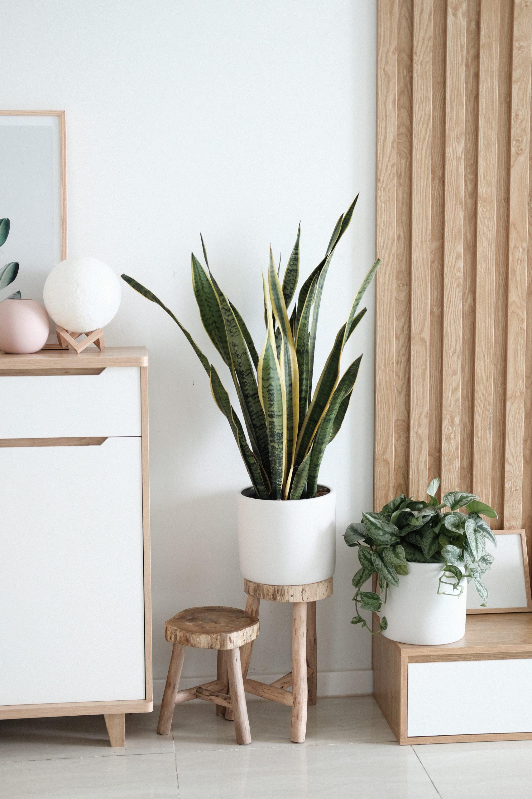Bauträger | Home Staging für Bauträger in Solingen, Hilden & Haan